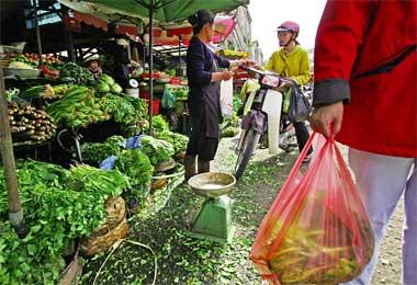An Essence of Vietnamese Soul