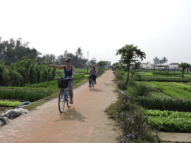 Foreign tourists are pictured enjoying their bicycle rides on the outskirts of Hoi An City. Photo: Tuoi Tre