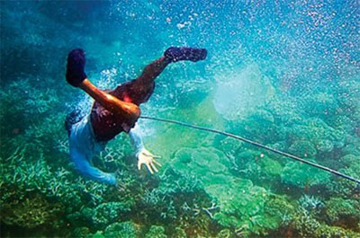 Snorkeling to watch corals at Tho Chu