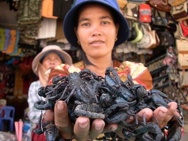 Insect market in An Giang