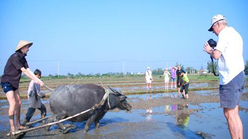 Grass roots tourism
