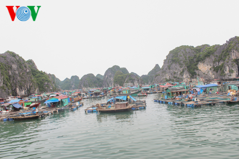 Cat Ba Island - an ideal tourist destination-08